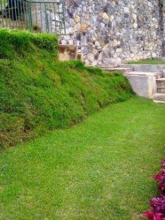 The neatly trimmed turf is an excellent area to stroll around
