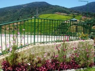 Parkeren gebied met de thee landgoed en Mount Pedro op de achtergrond