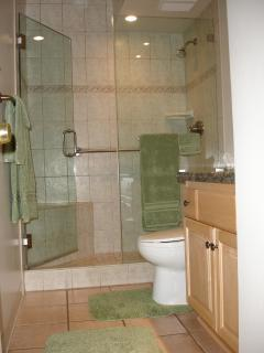 Bathroom--tiled shower; glass doors; granite counter; Toto toilet