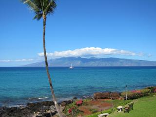 Panoramic Oceanfront 3BR-Awesome Sunsets & Views!, Lahaina