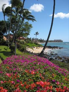 View looking down the scenic west Maui coastline with coloful tropical flowers.