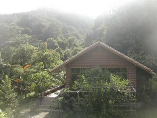 Cabin with Wiang Kosai National Park in background
