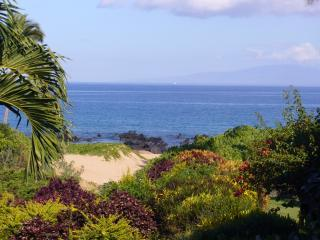We love this ocean view from our lanai. Enjoy waves crashing, snorkeling & seasonal whale watching.