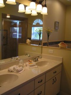 MASTER BATHROOM WALK IN SHOWER JACUZZI BATH