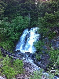 Waterfall at Mt. Rainier National Park