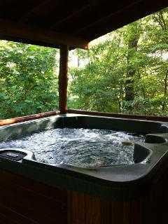 Hot tub on back deck to soak your cares away