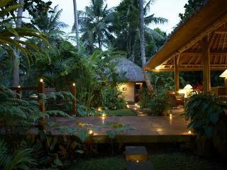 Villa Sungai - rivertop villa in central Ubud