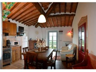 Kitchen ot Tuscan Villa le Capanne with view of the pool