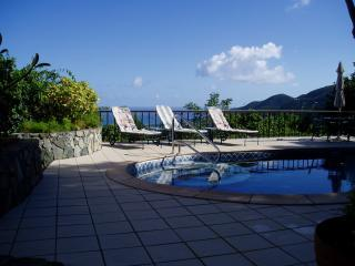 Satinwood's pool deck is private, breezy and shares the amazing view!