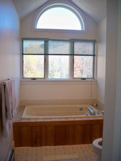 Master Bath w/Jacuzzi (shower not pictured)