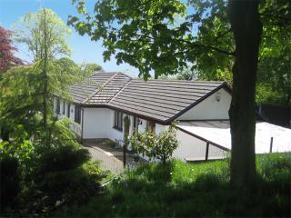 Lovely Coastal Cottage Garden & Treehouse Alnmouth