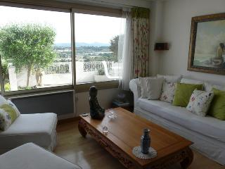 Air conditioned living with terrace & sea views