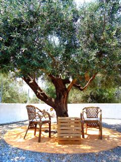 The best place to unwind is right here! Under our olive tree