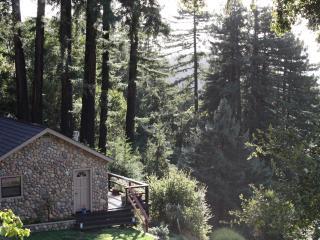 Santa Cruz Mountains Dragonfly Cottage Rental