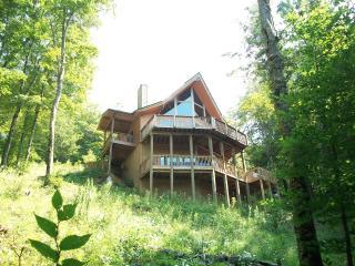 Asheville Area Cedar Chalet in Private Wolf Laurel, Mars Hill