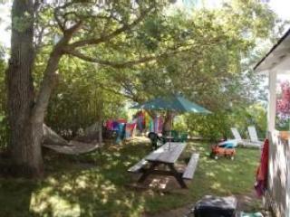 Patio con mesa de picnic, parrilla y hamaca
