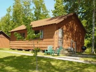 #10 MN Northwoods Fishing Cabin