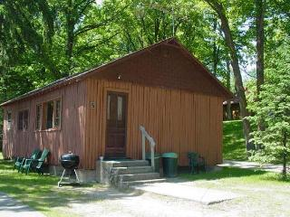 #5 Cabin Fever, Waterfront Central, Deer River