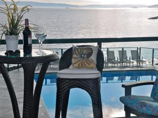 New Luxury Condo~Steps to Ocean~Panoramic View, Nanaimo