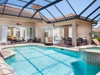 Luxury Estate Million Dollar Home - Pool and Spa