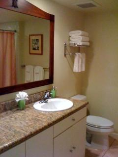 bath with granite counters