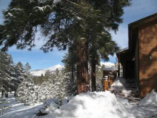 Dream Cabin, Unbeatable Views, Privacy & Ambience, Flagstaff