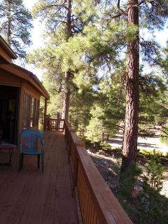 Dream Cabin, Unbeatable Views, Privacy & Ambience