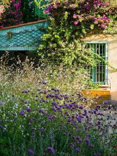 Gardens of Mas Des Fleurs