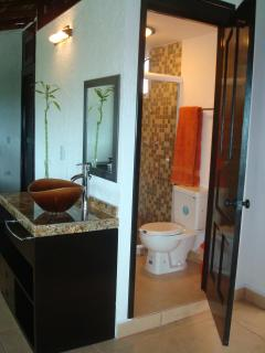 Toilet, shower with glass door and fine decoration