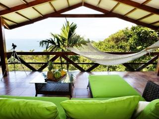 Villa Mot Mot - Ocean Views, Wildlife & Beach, Manuel Antonio National Park