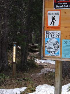 Boss Lake trail heads to left of sign