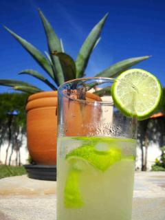 Our villa caretaker Dona Olivia makes the perfect caipirinha ! Her service is optional.