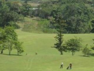 Golfing in Mandeville