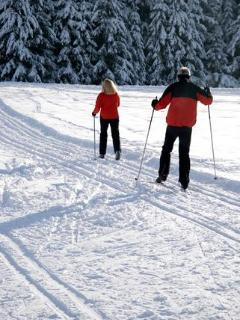 Cross Country Ski on Lake or Trail