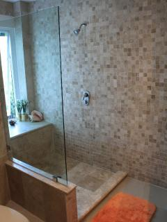 Master walk-in-shower