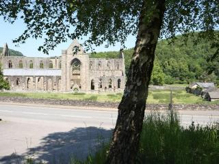 Tintern Abbey seen from our garden
