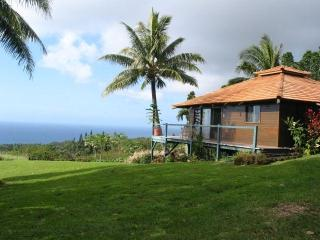 Anyas house honeymoon cottage Hana Maui