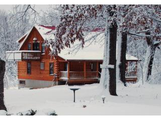 Spring Creek Cabin in winter