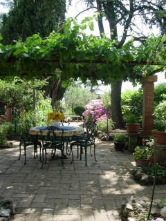 Under the Grape Arbor for dining al fresco