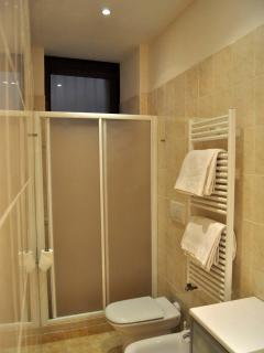 The bathroom and its large shower