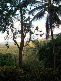 Santithani trails and views