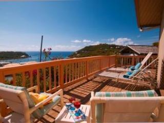 Poi Pu St John Villa - great views & total privacy