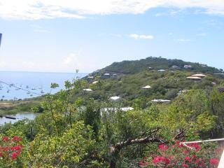 Poi Pu St John Villa - great views & total privacy, Cruz Bay