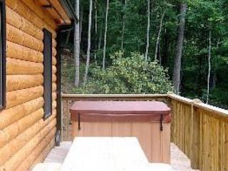 Rear Deck Hot Tub