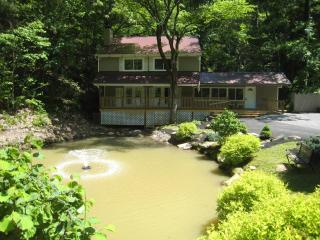 CATCH & RELEASE; Fishing Pond, Internet, Secluded, Pigeon Forge