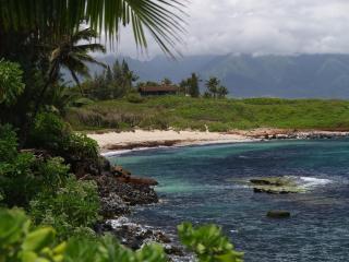 Maui by the Sea cottage
