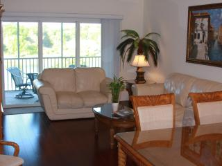 Beautiful Waterfront Canopy Walk Condo!, Palm Coast