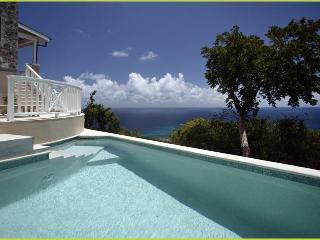 Honeymoon/Romantic Private Suite w Ocean View & Pool - Little Palm Guest Suite