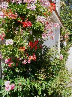 Flowers on the Cottage's Main Facade