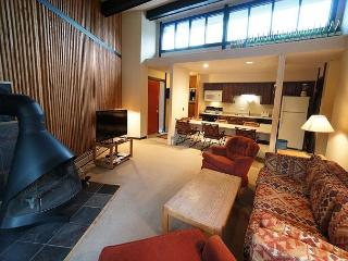 Gold Camp H119 Condo Breckenridge Colorado Vacation Rental